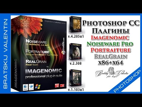 Скачать и установить плагины Imagenomic Noiseware Pro Portraiture RealGrain
