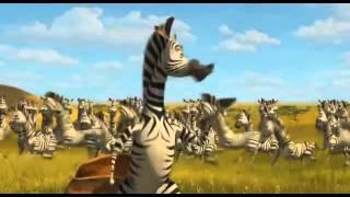 Мадагаскар 2. Зебры и вода. Разочарование Мелмана