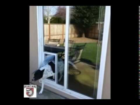 how to stop dog scratching glass door