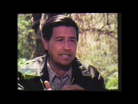 Cesar Chavez - Lost Interview segment 1974 - Non-Violence