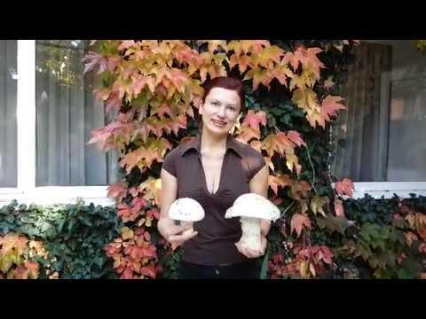 Пироги с солеными грибами: начинка для пирожков, рецепт с