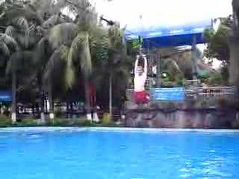 idiots doing salto