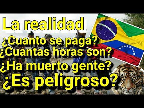 Download ¡¡Asi fue Cruzar las Trochas desde BRASIL Hasta VENEZUELA!! - La Realidad