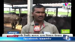 Sucess story of Dhananjay khemlapurkar