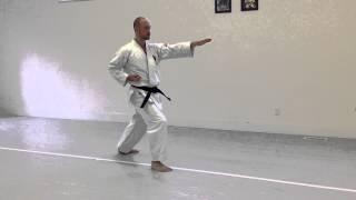 Shuto Uke Kokutsu Dachi, Nukite Zenkutsu Dachi (back) | IKD Testing Syllabus videos | Shotokan 2013
