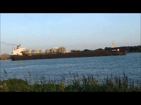 The Algowood, Self-Unloading Bulk Carrier, Detroit River [HD]