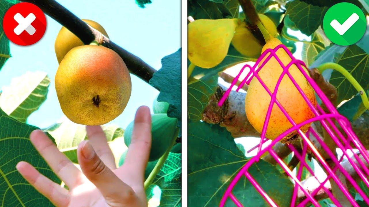 32 полезный лайфхак и иснтрумент для садоводства