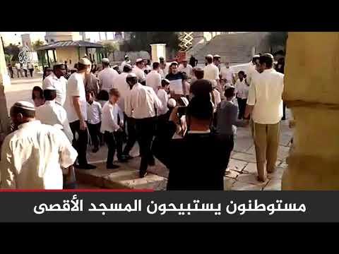 في مشهد متكرر.. عشرات المستوطنين يقتحمون باحات #المسجد_الأقصى ????  - 11:55-2019 / 10 / 17