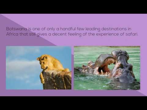 Book Botswana Safari Tours Packages