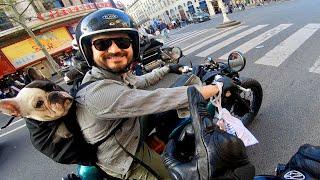 J'étais pas prêt, un Chien sur une Moto- Daily #17