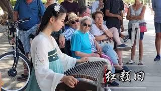 碰碰【古箏】Guzheng Cover《红颜旧 Hong Yan Jiu》【西风夜渡寒山雨 家国依稀残梦里】Chinese Musical Instruments