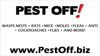Pest Off - West Midlands Pest Control - Radio Ad
