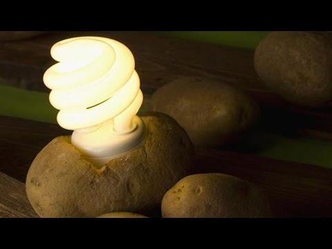 Una patata puede iluminar tu habitación durante un mes!