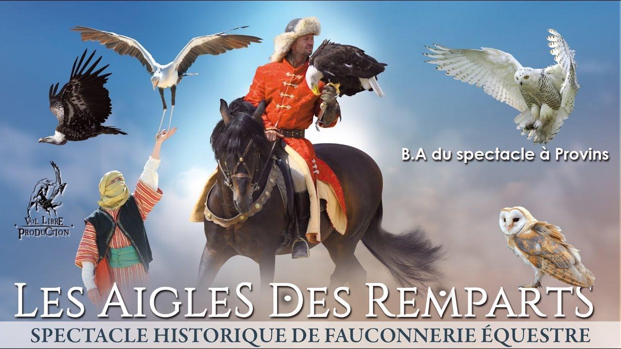 Les Aigles des Remparts - B.A spectacle - Provins 77