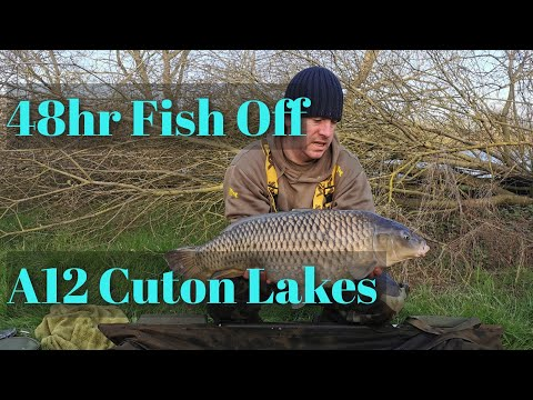 #Carp Fishing# A12 Cuton Lakes | Fish Off | 48hrs | New Announcement