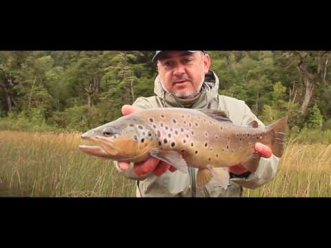 Patagonia West  - Fly Fishing Chile 2017