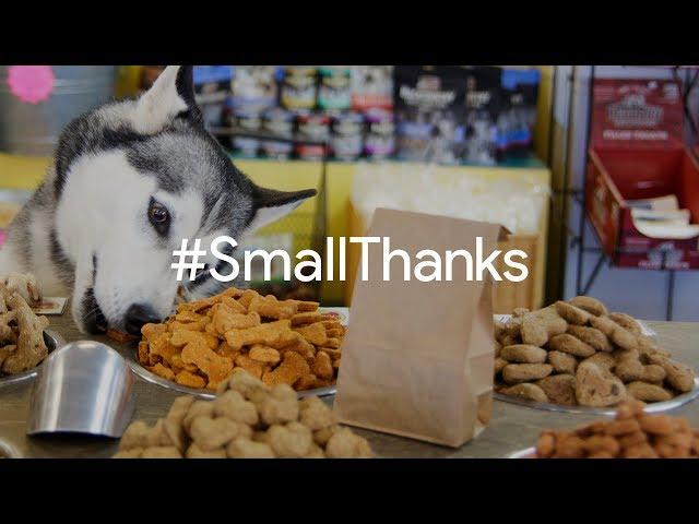 #SmallThanks for Pet Vet Supply | Google