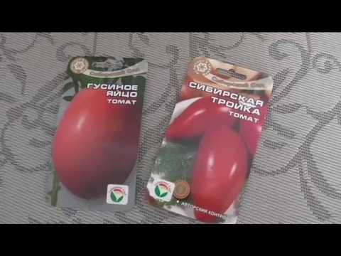По совету друзей купил эти хорошие сорта томатов | хорошие | томатов | сорта