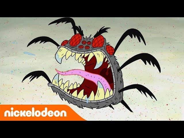 SpongeBob Squarepants | Patrick vs. de zeespin | Nickelodeon Nederlands