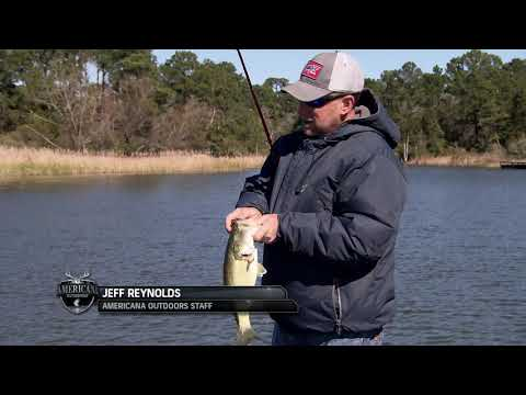 A Cold Day Of Bass Fishing Lake Bastrop