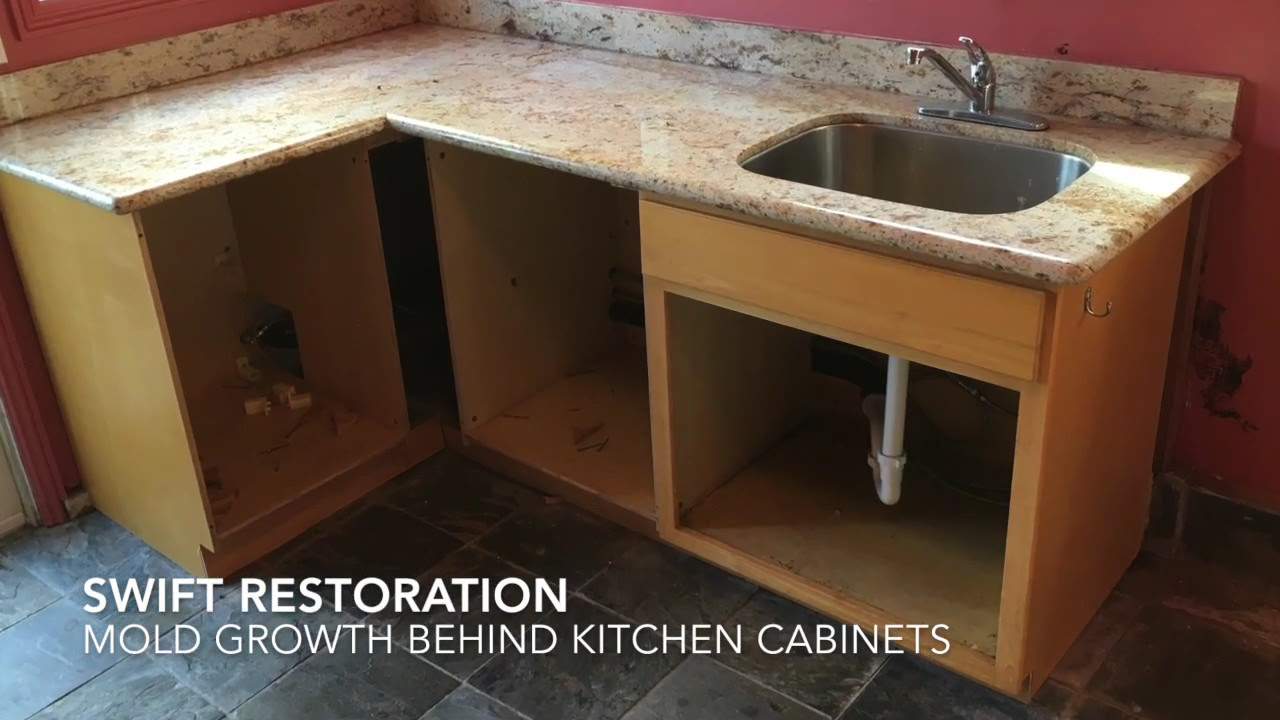 Mold Growth Behind Kitchen Cabinets Youtube