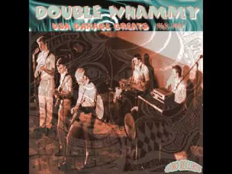 Various - Double Whammy - USA Garage Greats 1965-1967 Psych Fuzz Psychedelic Freakbeat Music ALBUM