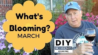 What is BLOOMING - March