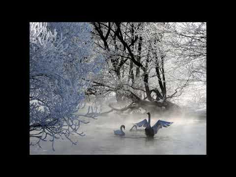 Tchaikovsky Swan Lake Highlights Algis Zhuraitis Bolshoi Theatre Orchestra
