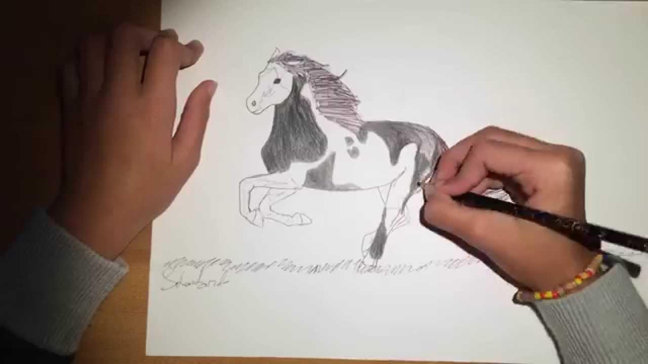 Disegnare dipingere un cavallo perfetto - Tanti tutorial ...