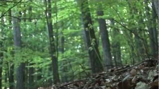UNESCO Biosphere Reserve Rhoen