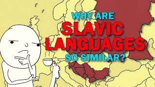 Slavic Languages | Why are they so similar to eachother?
