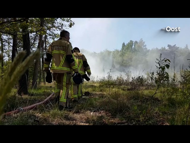 Bosbrand in Bornerbroek