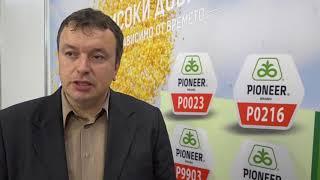 Пионер Семена - предложения от Агра 2018