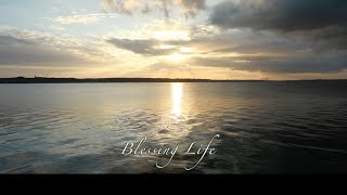 BlessingLife/鹿のように