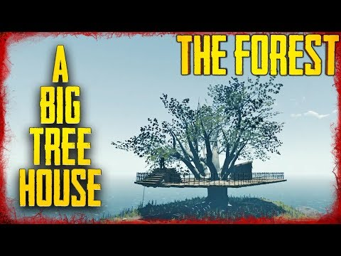 HOW TO BUILD HOUSES IN THE BIG TREES   The Forest