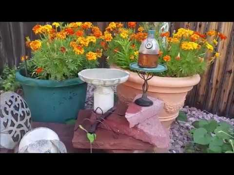 How to make an upcycled mold for a cement bird bath