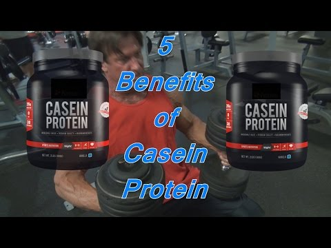 5 Benefits of Casein Protein MrYorkieLover Fitness Quick Tips