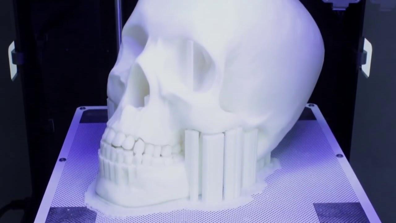 Печать модели черепа на 3D-принтере Zortax m200 - YouTube a7fdcd30abcaa