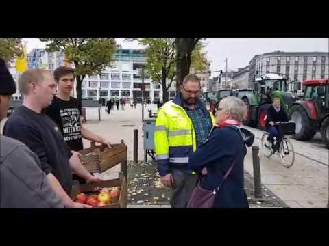 Bauern Demo 450 Bis 500 Trecker Machen Verkehrschaos In Hamburg 2019