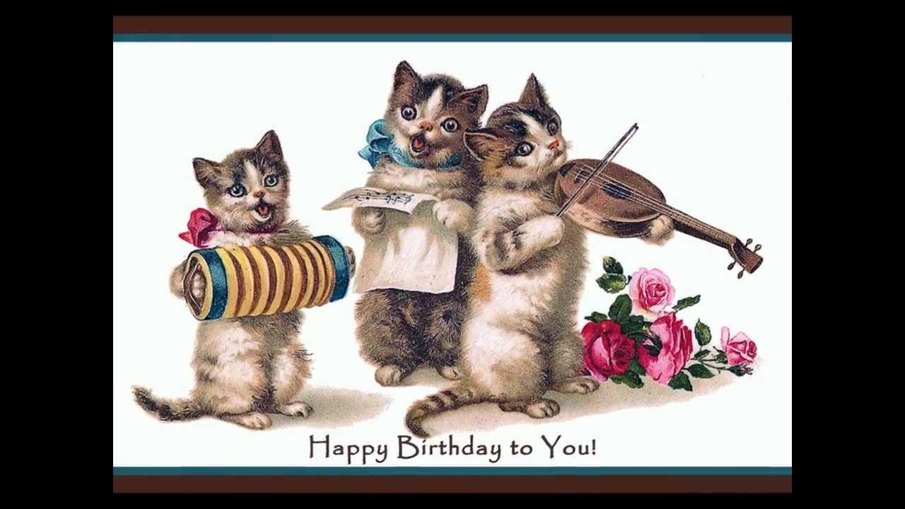 Happy Birthday Youtube Funny Cats