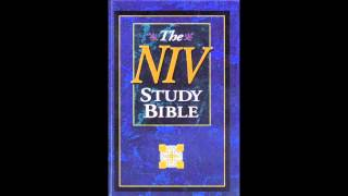 The Book of 2nd Samuel (NIV Audio Bible Non Dramatized)