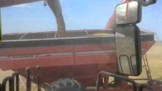 Autonomous Tractor at Work