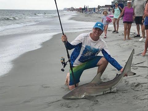Shark Fishing At Myrtle Beach