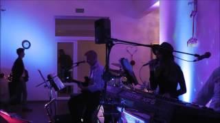 Blue Moon zespół na wesele - Już nie ma dzikich plaż