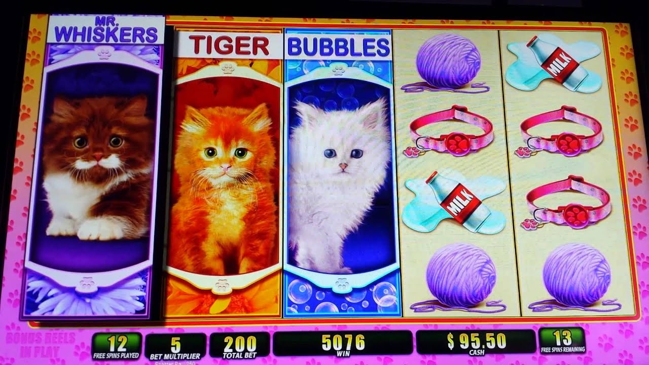OMG Kittens Slot Machine - Play OMG Kittens Free Online