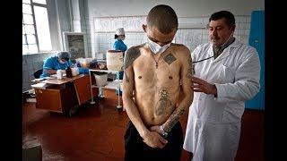Чем болеют зеки в тюрьмах