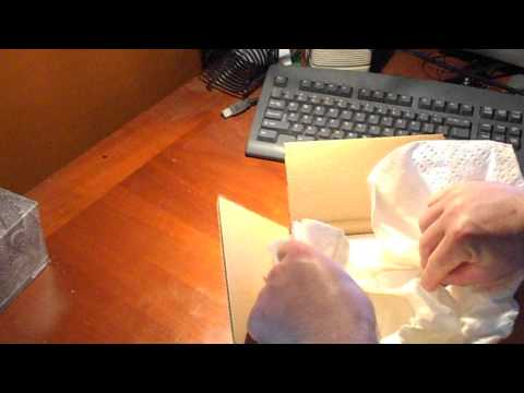 Unboxing my first Bearded Dragon!