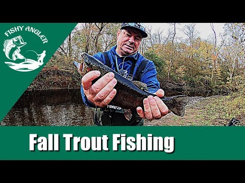 Trout Fishing White Clay Creek Delaware (Fall 2019)