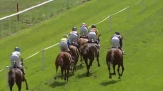 Vidéo de la course PMU PRIX DE MULHEIM