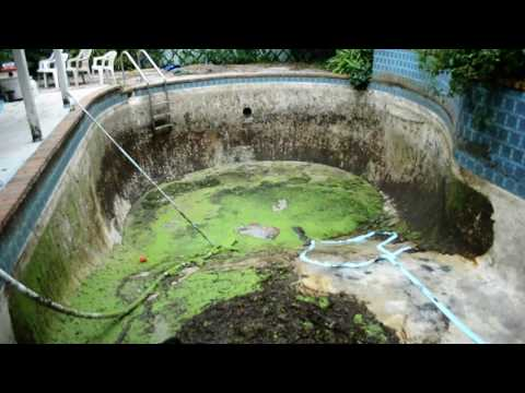 Time lapse of turning a swamp into a pool